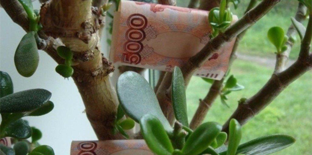 как стать богаче и успешнее